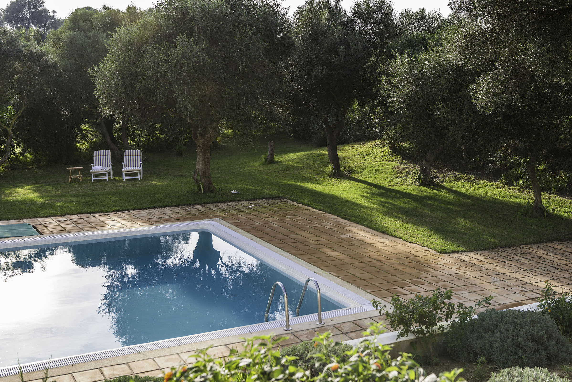 Villa Dalia pool and garden